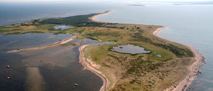 Tradicionālais Līgo pasākums laivās. Šogad jaunas zemes – Tallinai tuvējās salas Somu līcī. Salas: Kräsuli, Aegna, […]