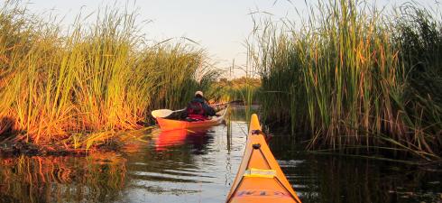 5.maijāĶemeru nacinālais parks sadarbībā ar Dabas aizsardzības pārvaldi organizē Ķemeru nacionālā parka ceļotāju dienu. Pasākuma ietvaros […]