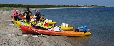 Ikgadējais laivu brauciens, festivāls un piedzīvojums cilvēkiem ar možu garu – Līgo svētki Igaunijas salās. Atgriežamies […]