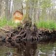 Dabas aizsardzības pārvaldes Pierīgas reģionālā administrācija sadarbībā arĶemeru nacionālā parka reģiona uzņēmējiem un pašvaldībām aicina uzĶemeru […]